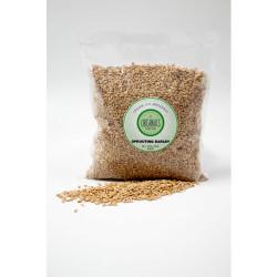 Organics Matter Barley Sprouting Seeds